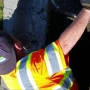 Kennewick City worker rescues trapped ducklings from street drain