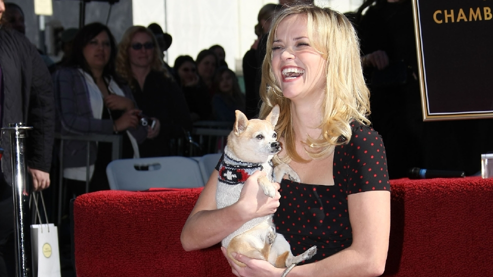 reese witherspoon is she dead