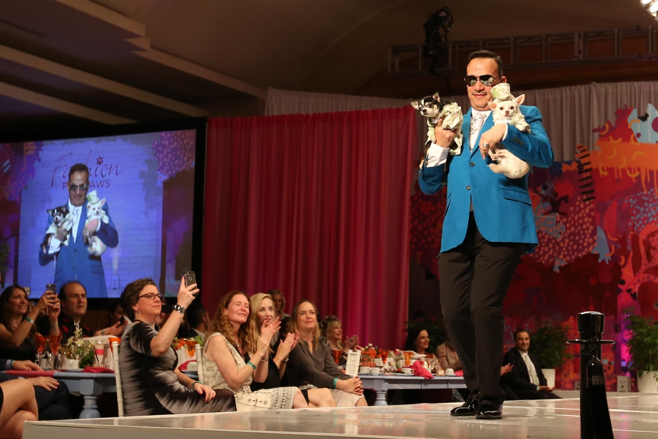 Doggy fashion designer Anthony Rubio and his pet chihuahuas. (Amanda Andrade-Rhoades/DC Refined)