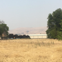 Poor air quality hits central, southern Washington due to fire smoke