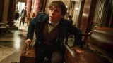Eddie Redmayne was filmmakers' first and only choice to play Newt Scamander