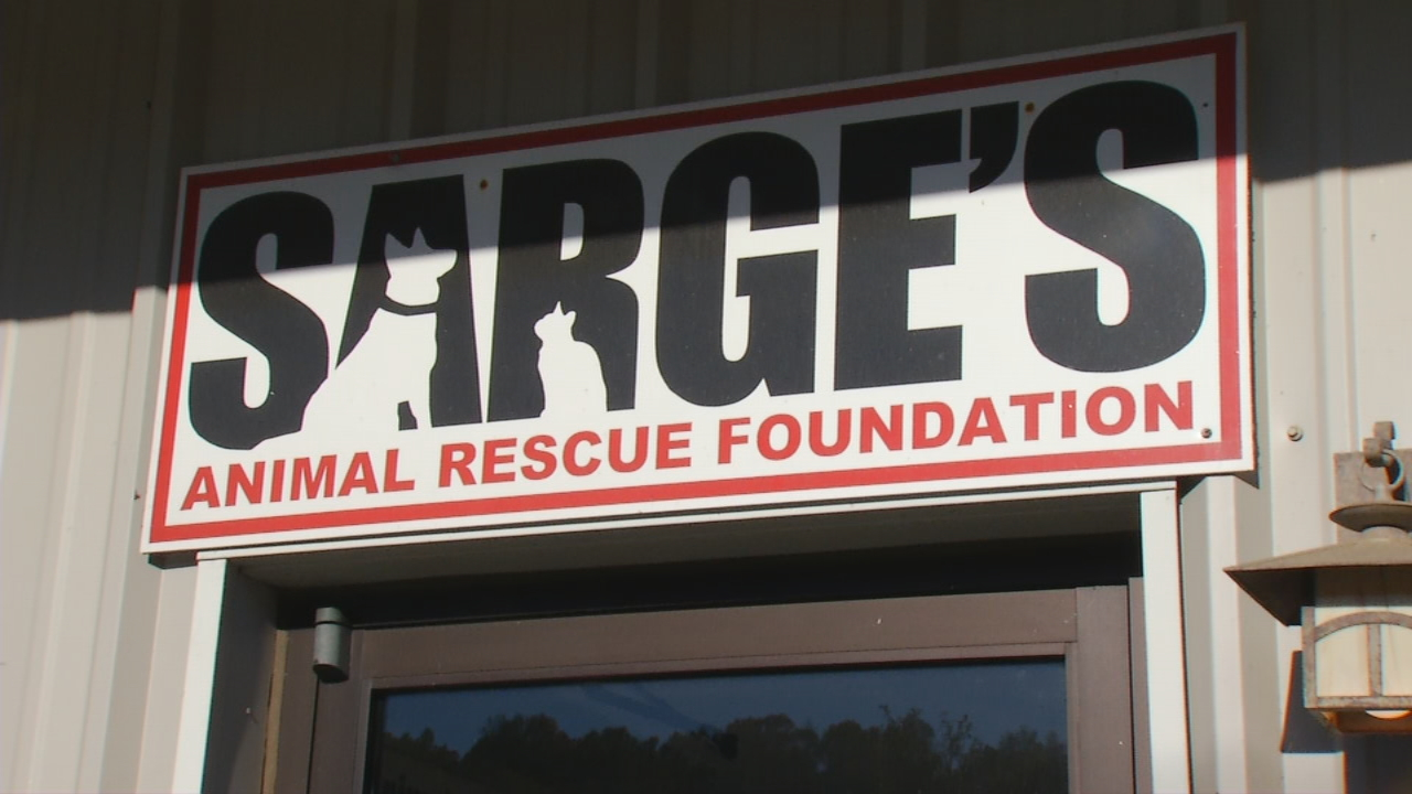 Pet Project: Sarge's Animal Rescue Foundation