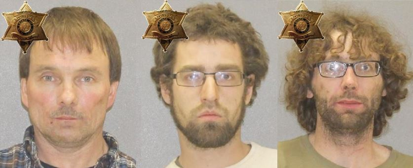 Deputies said Kenneth Hoag (L), Kurt Redance (C), and Andrew Culliton (R) were all arrested in connection with the drug investigation (Photos: LCSO)