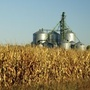 Small, midsize farms decreasing in Nebraska