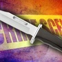 Charleston County Coroner's Office identifies female stabbed to death Sunday night