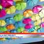 Umbrella Sky Project: Sightseers causing traffic problems