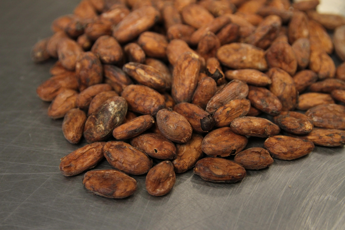 Close up of the unfrosted and unseparated cacao beans. (Image: Amanda Andrade-Rhoades/ DC Refined)