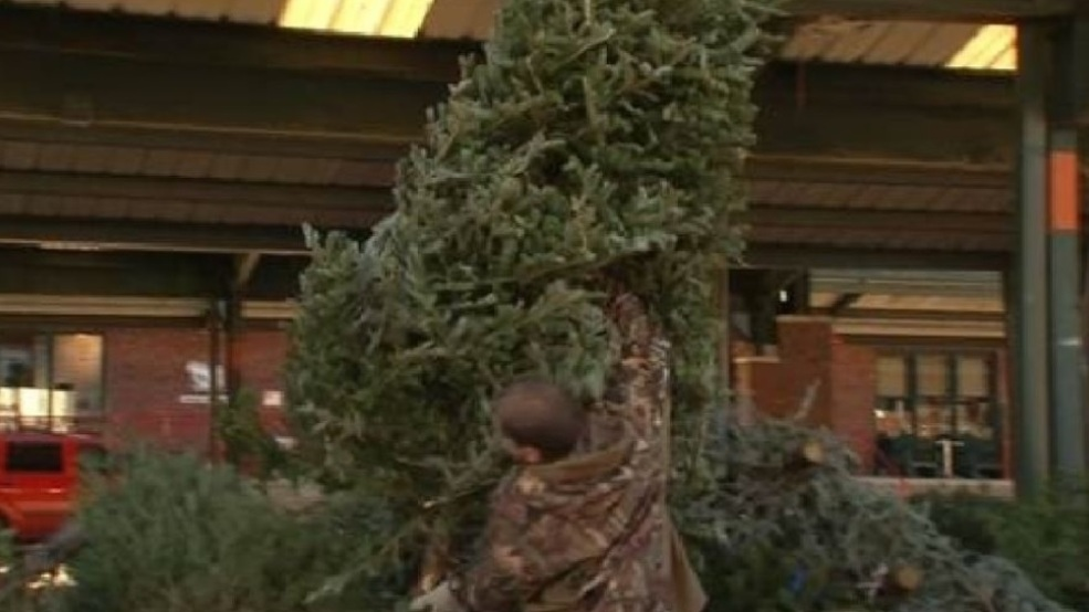 Christmas tree disposal locations offered in Charleston, Huntington   WCHS