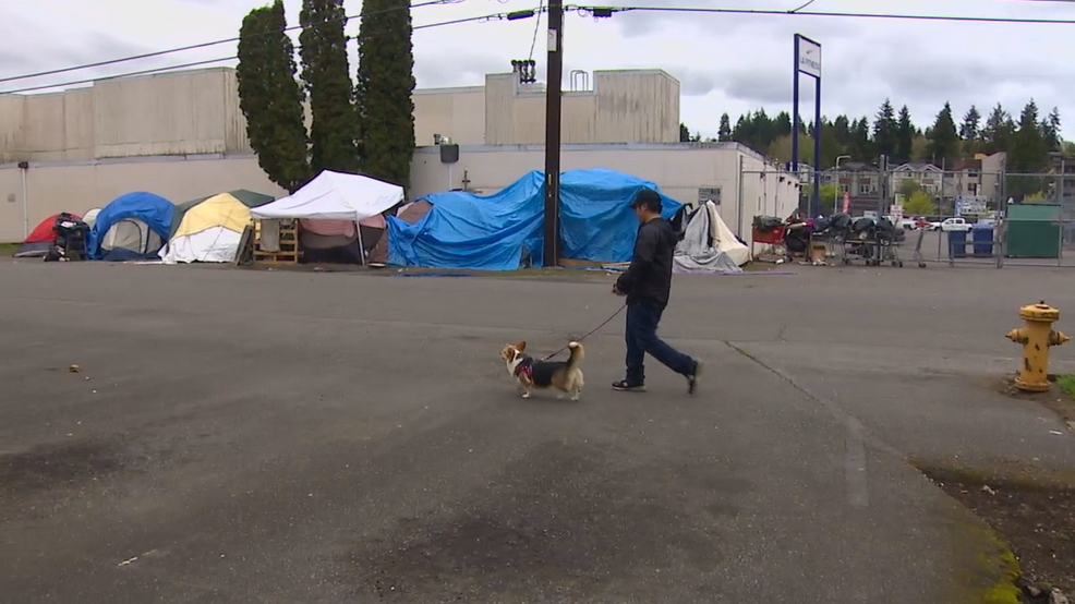 Seattle city employee selling home, moving family out due to homeless mess