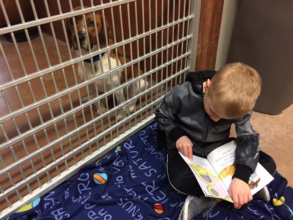 6-year-old Roman already has a strong passion to help rescued animals find forever homes.{ }(Image: McConn family)