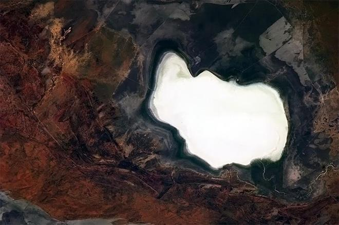 Dry lake like a bunny, in the unmistakable Outback.  (Photo & Caption: Chris Hadfield/NASA)