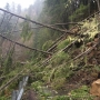 ODOT crews work to clear landslide on OR 36 west of Triangle Lake