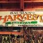 Bauman Farms Harvest Festival: An autumn tradition of family fun