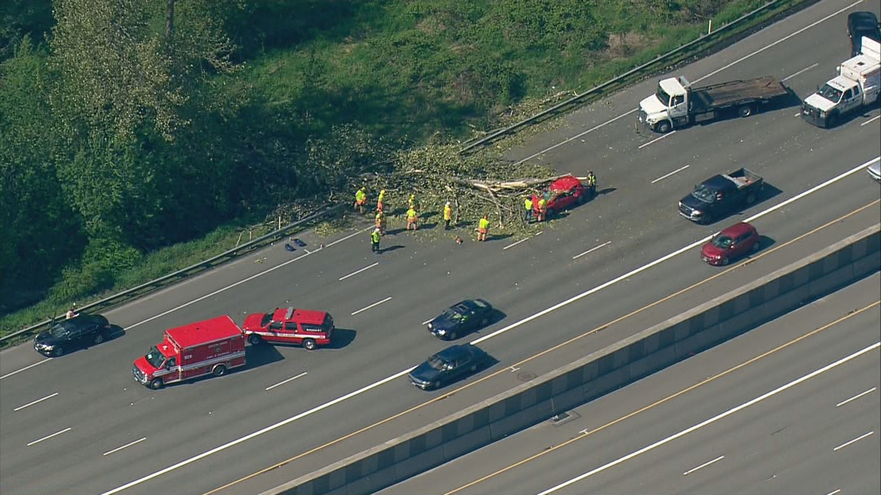 A driver's dash cam was rolling the moment a tree fell onto a car on Interstate 5 near Fife, Wash. on Wednesday, April 26, 2017. (Photo: KOMO News/Air 4)
