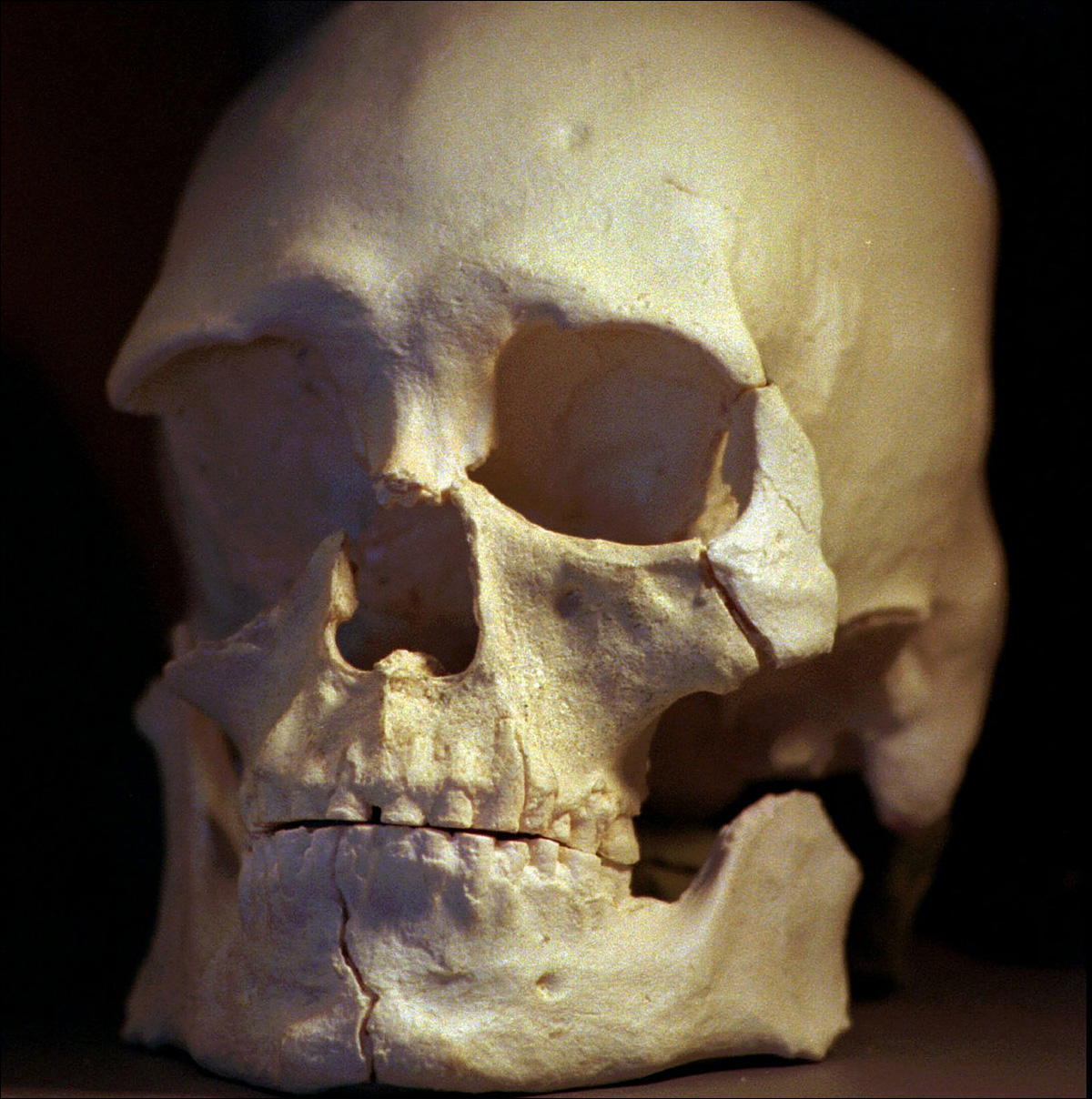 It was 20 years ago that the ancient skeleton known as Kennewick Man was discovered.