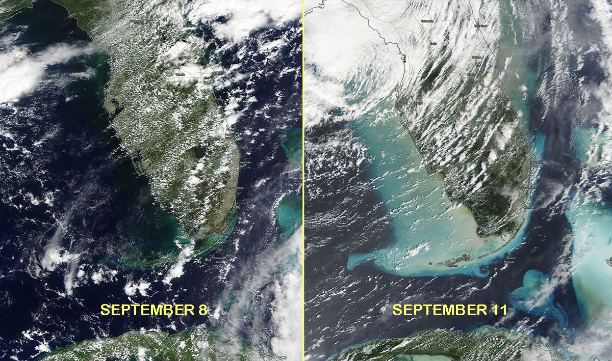 2 NASA MODIS satellite images show the southern Florida coast before Hurricane Irma struck and the day after Irma passed. (Photo: NASA/MODIS)