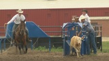 4-H Horse Expo showcases diversity of riding styles