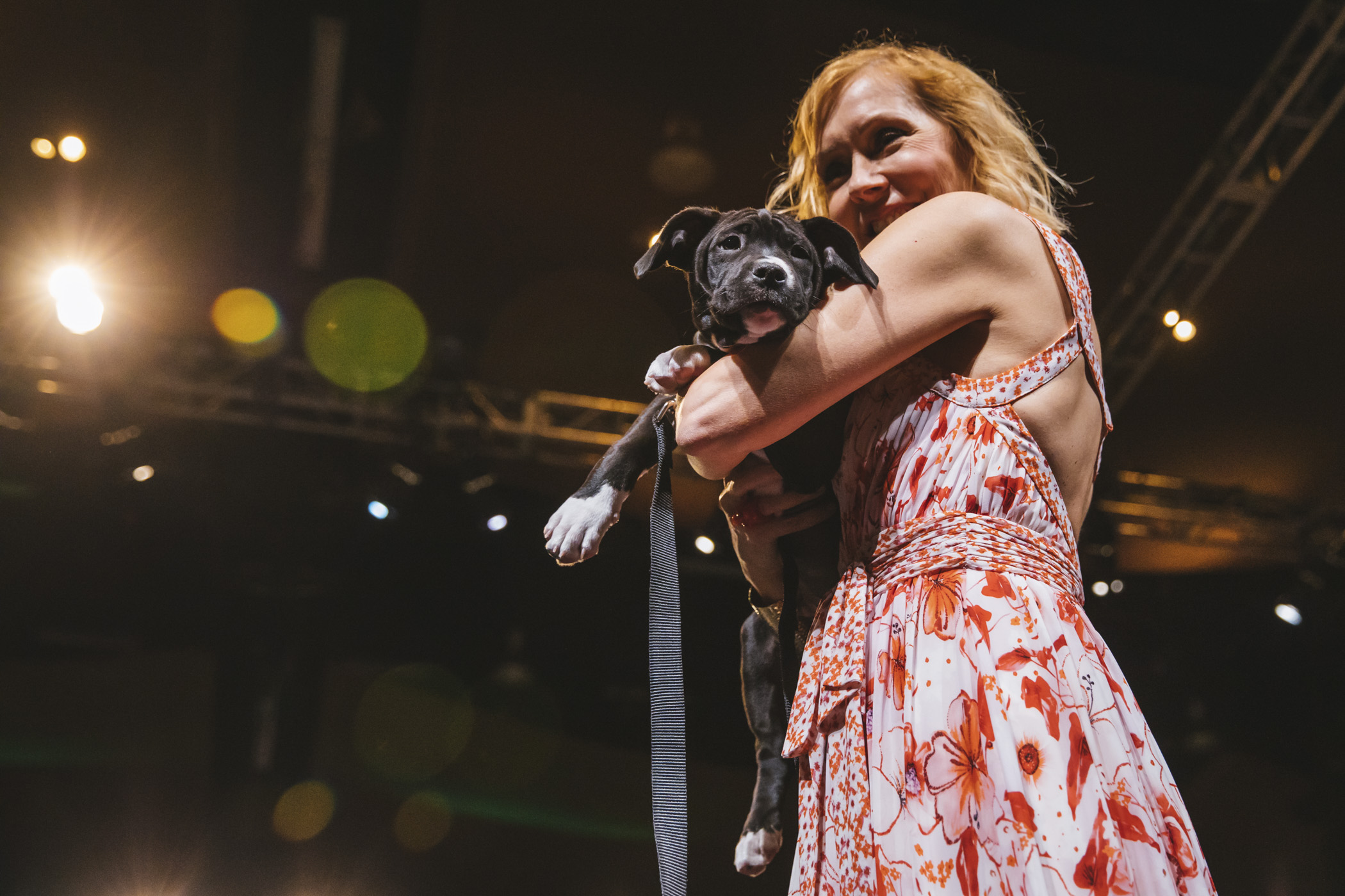 The 2019 annual Tuxes and Tails event raised more than $1.5M for Seattle Humane Society through donations, auctions, raffles and more this weekend (May 11, 2019). Local celebs walked adoptable cats and dogs down the runway at the Meydenbaur Center in Bellevue to a ballroom filled with animal people. All proceeds benefit animals in SHS's care. (Image: Sunita Martini / Seattle Refined)