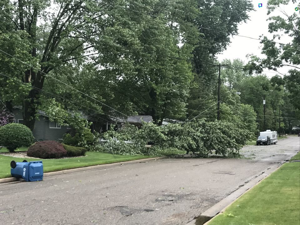 A downed tree rests on a power line on East Drive in Marshall, Michigan, following the June 10-11 storms that swept the region. Many in the Marshall area lost power in the storms. (WWMT/Chime In, Tom Waidelich){ }