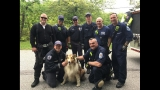 Anne Arundel Co. Fire Dept. rescue 85-pound dog from sinkhole