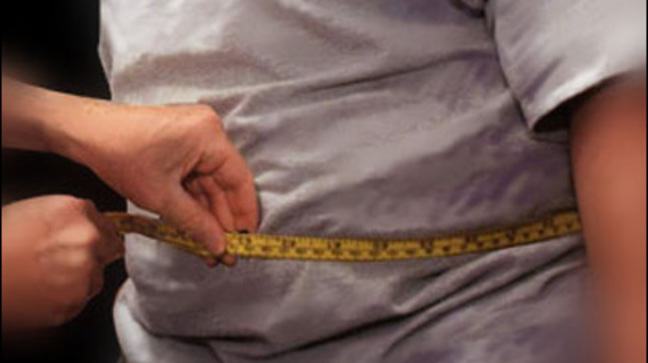 Children's obesity rates in rich countries may have peaked