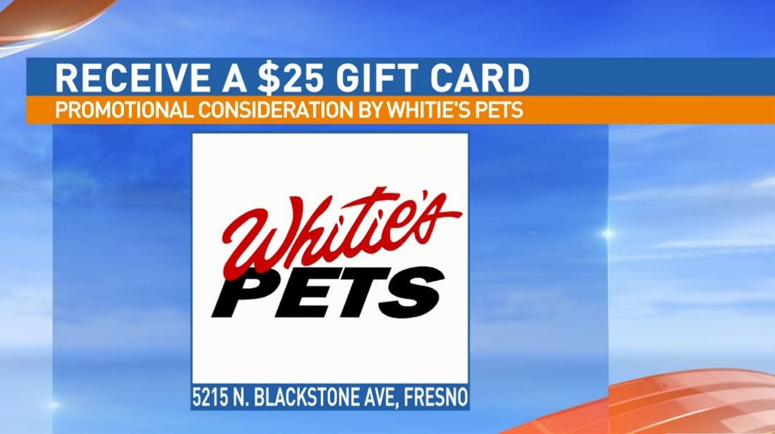 Get a $25 gift certificate to Whitie's Pets for adopting Brownie