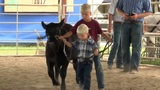 Confidence is key at Webster County fair 4-H livestock shows