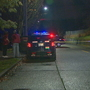 Man struck by car, killed in Seattle's Leschi neighborhood