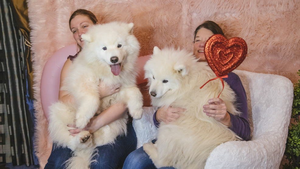 Photos: A little snow can't stop the Nation's Biggest Dog Snuggling Party