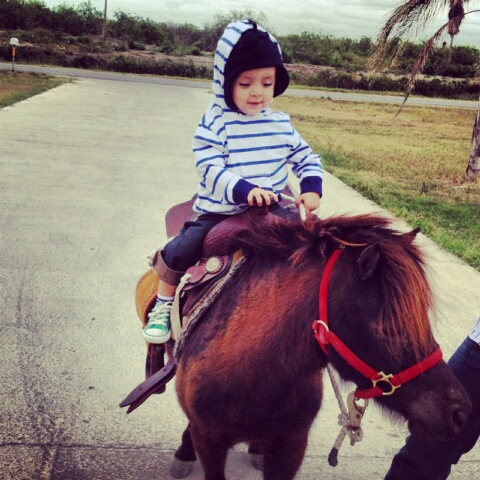 <a  href=&quot;http://share.valleycentral.com/Media/View/3293716&quot;>Horse Ride</a>