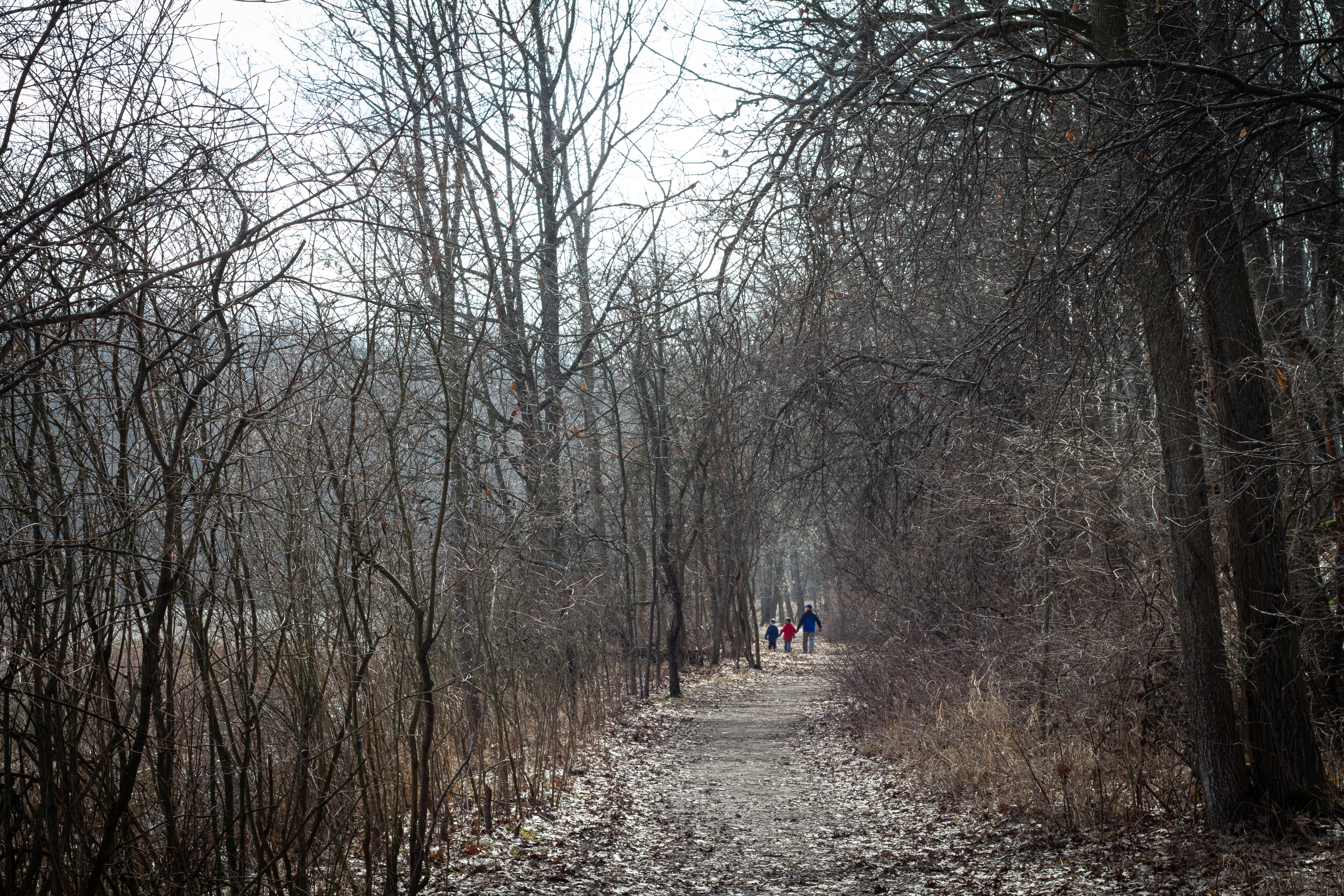 The Williams family from Lawton, Michigan walks a trail at Asylum Lake Preserve on Wednesday, March 25.{ }(WWMT/Sarah White)