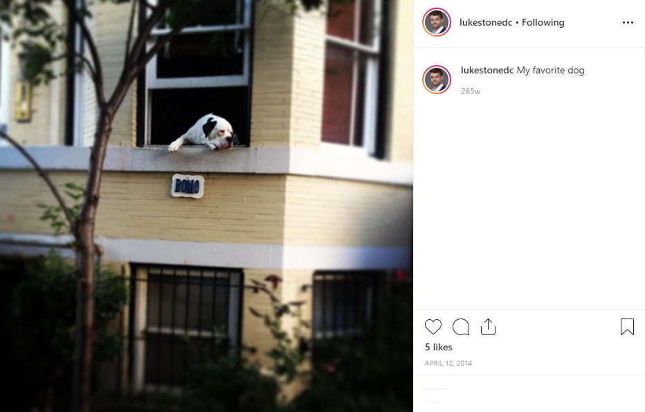 { }Luke broke our hearts all over again when we were scrolling through his feed and were forced to remember that beloved AdMo fixture Romo the dog passed away in the fall of 2018. Luke actually posted about Romo twice: In August 2013 and April 2014. Could this mean Luke lives in AdMo? (Image: via IG user @lukestonedc)