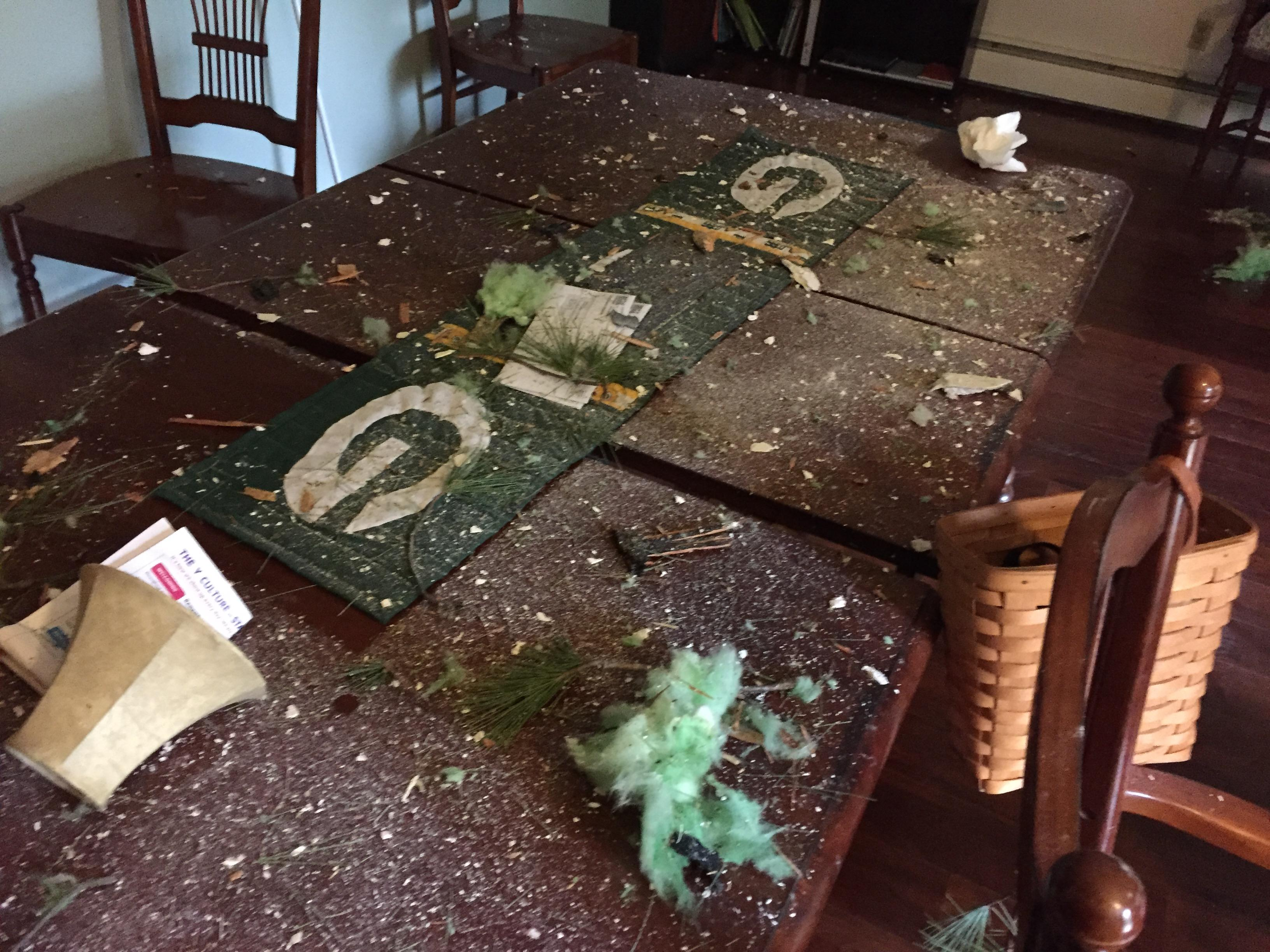 Debris after a tree came through the home.                       (Courtesy: Katy Kramer) May 18, 2017.