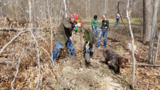 Students help plant dozens of trees on Drummond Island