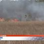 Escambia fire crews extinguish marsh fire near Lillian Highway