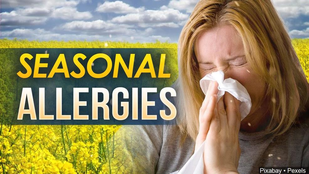 High pollen count in Middle Georgia poses allergy risk