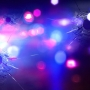Police: Florida man shot in Danville