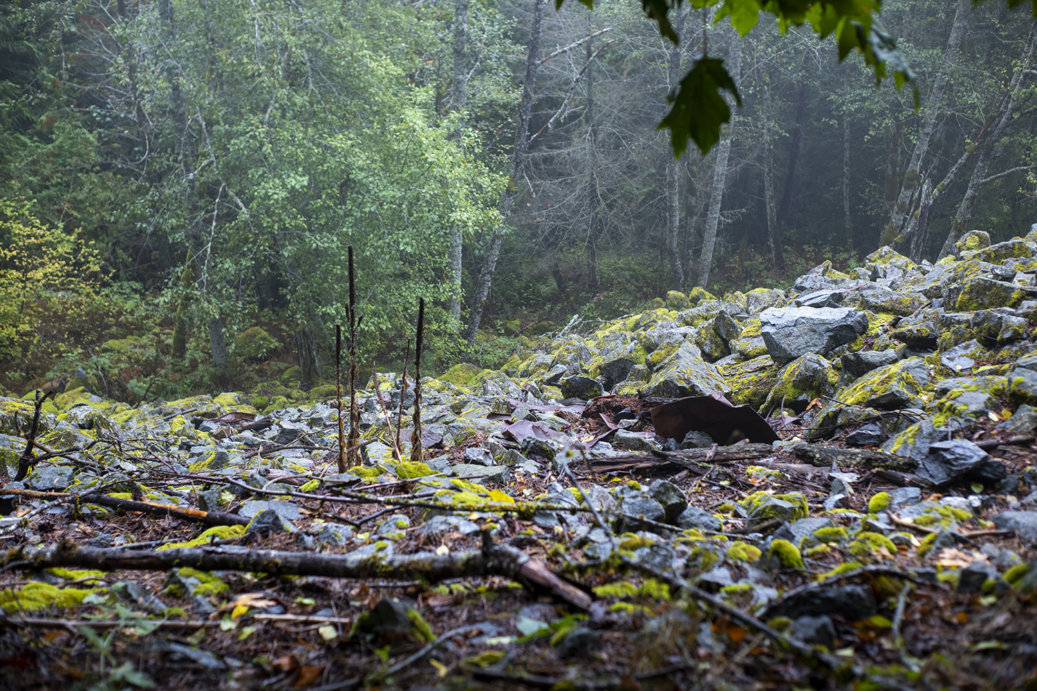 Noted as one of the country's worst rail disasters and deadliest avalanches of all time, the town of Wellington was soon renamed Tye in hopes of distancing memories from a disastrous history. The Iron Goat Trail leads along the gorge where warped debris and rusted metal can still be seen today. (Image: Rachael Jones / Seattle Refined)