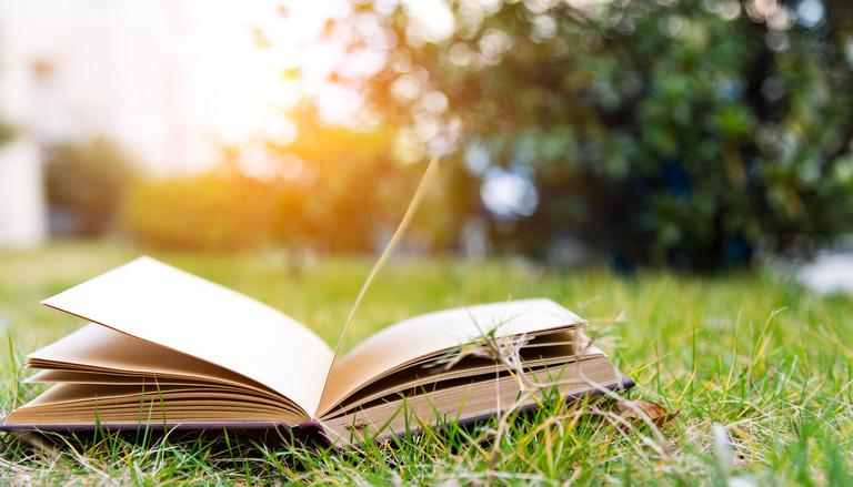Spring is here and with it comes great books from local authors, local publishers and some can't be missed national bestsellers. Curl up and start reading! (Image: Getty Images)<p></p>