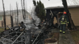 Boise Fire: Tree catches fire, spreads to home