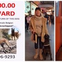 Assistance sought, reward offered to recover woman's missing service dog