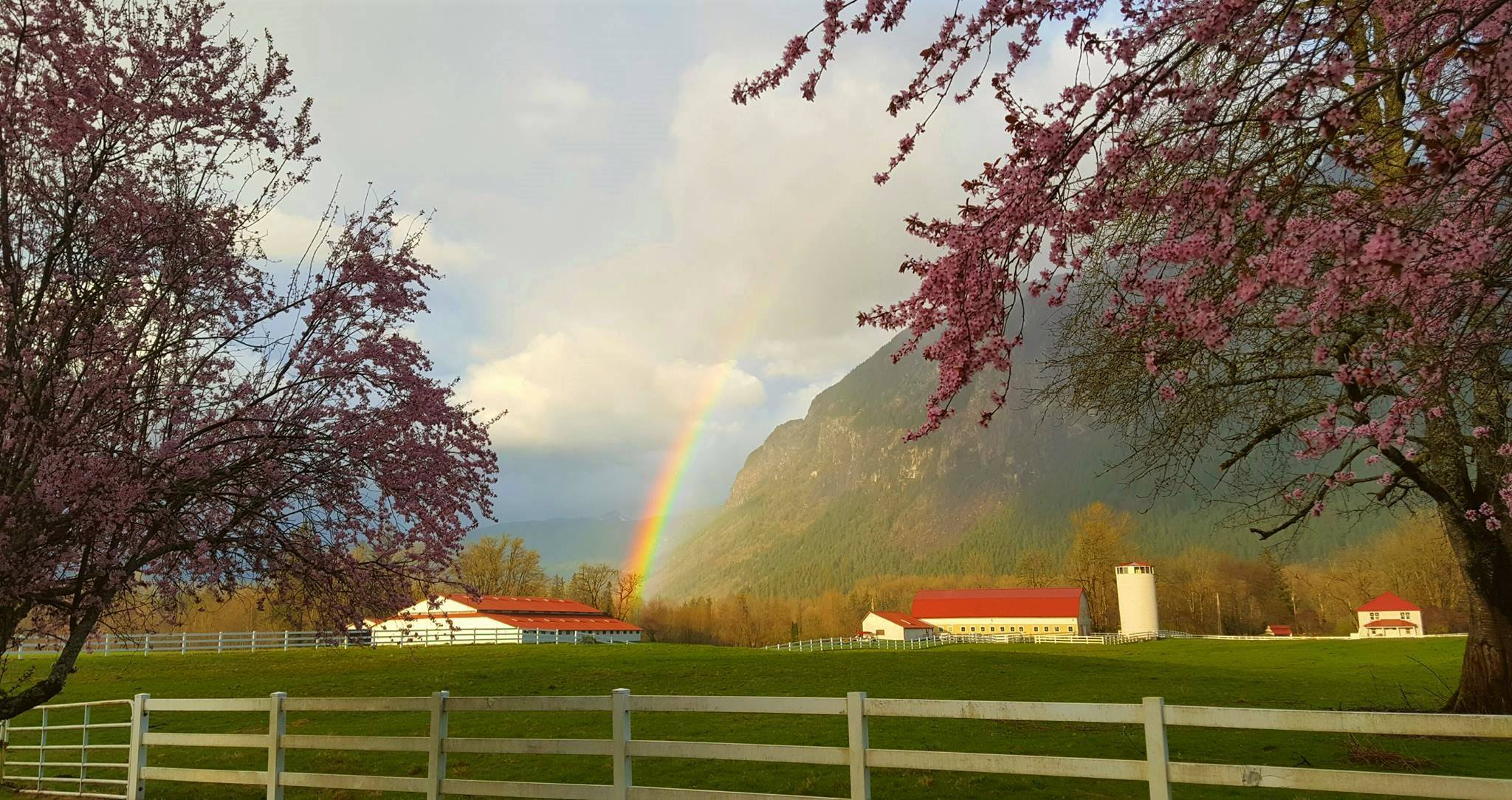 A rainbow is seen in the sky in North Bend, Wash. Monday, April 10, 2017. (Photo:  Tim Tobias)