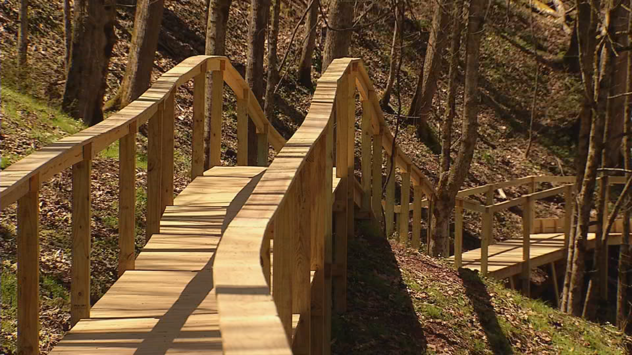 The boardwalk is extremely well made from quality lumber and hugs the contour of the land. (WCHS/WVAH){ }