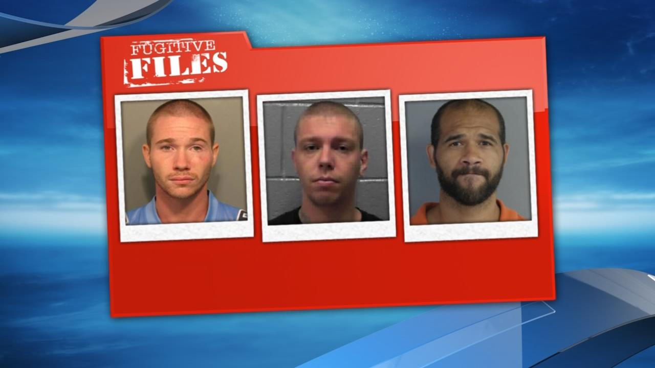 Corey Hanson, Jeffrey Troup Jr., Jesse J. Nelson