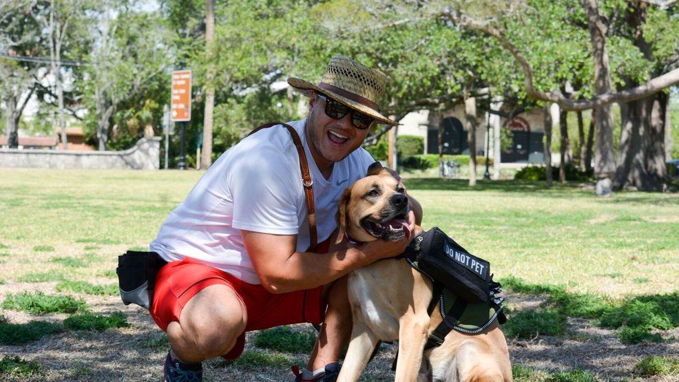 Dog Training Schools In Cincinnati