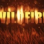 Firefighters battling brush fire in Wadsworth