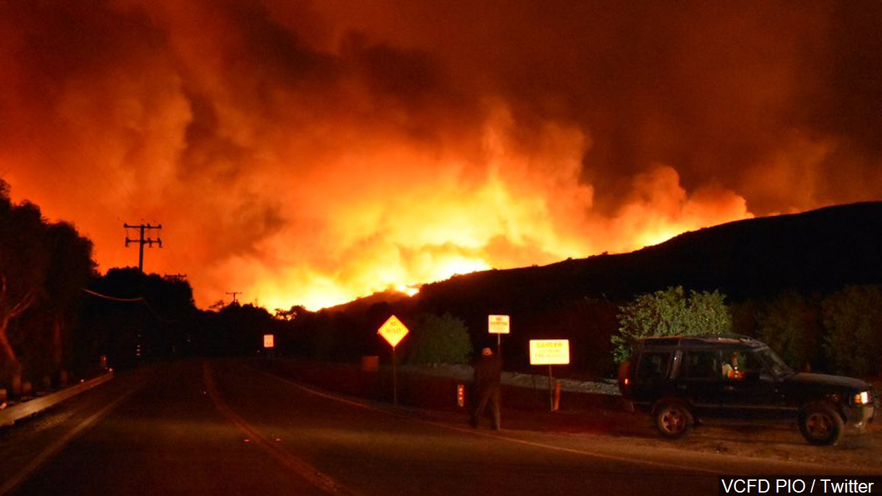 A scene from the Thomas Fire in Ventura County, Southern California. (MGN Online)