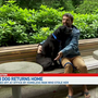 Stolen Portland dog returned by homeless man