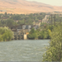 Police arrest 16-year-old in Yakima Greenway rape investigation