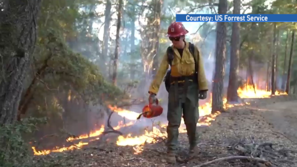 Rogue River-Siskiyou National Forest Fall prescribed burning | KTVL